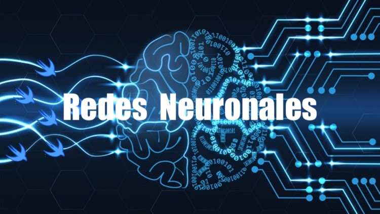 Redes Neuronales Artificiales Estructura Y Usos